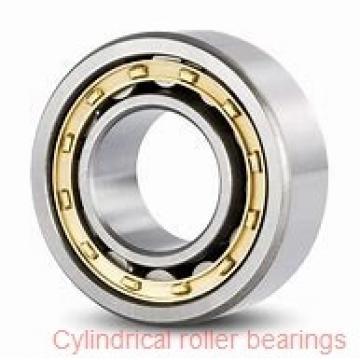 140 x 9.843 Inch | 250 Millimeter x 1.654 Inch | 42 Millimeter  NSK N228M  Cylindrical Roller Bearings