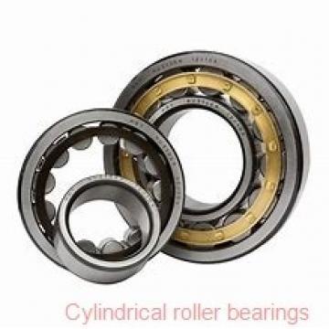 1.969 Inch | 50 Millimeter x 4.331 Inch | 110 Millimeter x 1.063 Inch | 27 Millimeter  NTN N310EG15  Cylindrical Roller Bearings